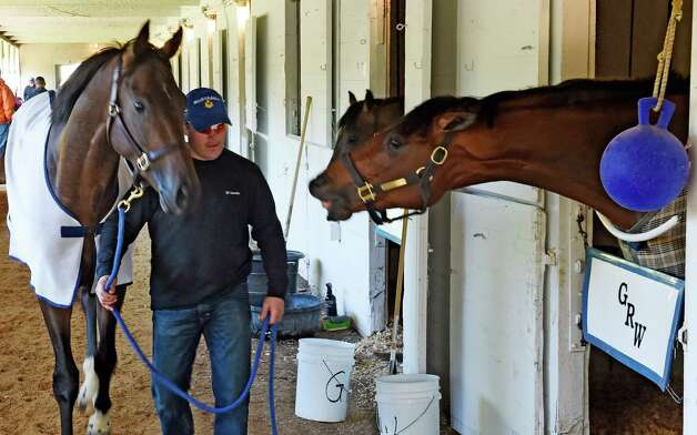 Local Derby contender Tencendur, right, tries to take a little nip of another Derby contender, Mubtaahij, in the barn area of Churchill Downs Tuesday morning April 28, 2015, in Louisville, Ky. The 141st running of The Kentucky Derby starts Saturday.  (Skip Dickstein/Times Union) Photo: SKIP DICKSTEIN