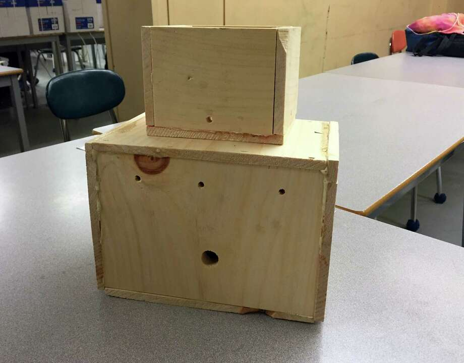 Free bee boxes will be available next week in the Danbury area. The boxes are designed by New Fairfield High School students to provide a safe habitat for bumble bees and increase plant pollination. Photo: Katrina Koerting / The News-Times