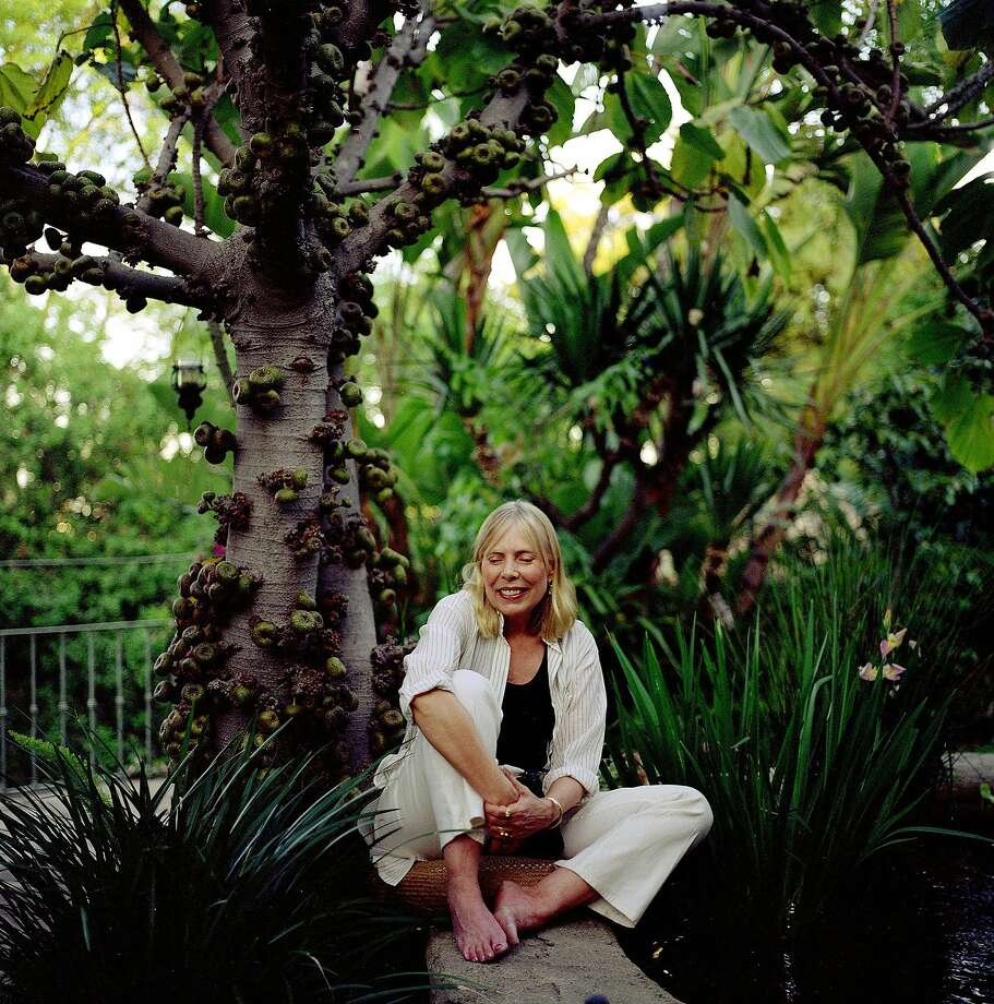 "BACK TO HER GARDEN: ""You have to pull the weeds in your soul when you are young, when they are sprouting,"" Mitchell says, ""otherwise they will choke you."" -- P079538.CA.0329.mitchell1.GEM Singer Joni Mitchell sits under a fig tree in the courtyard of her Bel Air home.  She said that a bird dropped a seed in the spot and the result was the fig tree. Photo: Genaro Molina, Los Angeles Times"