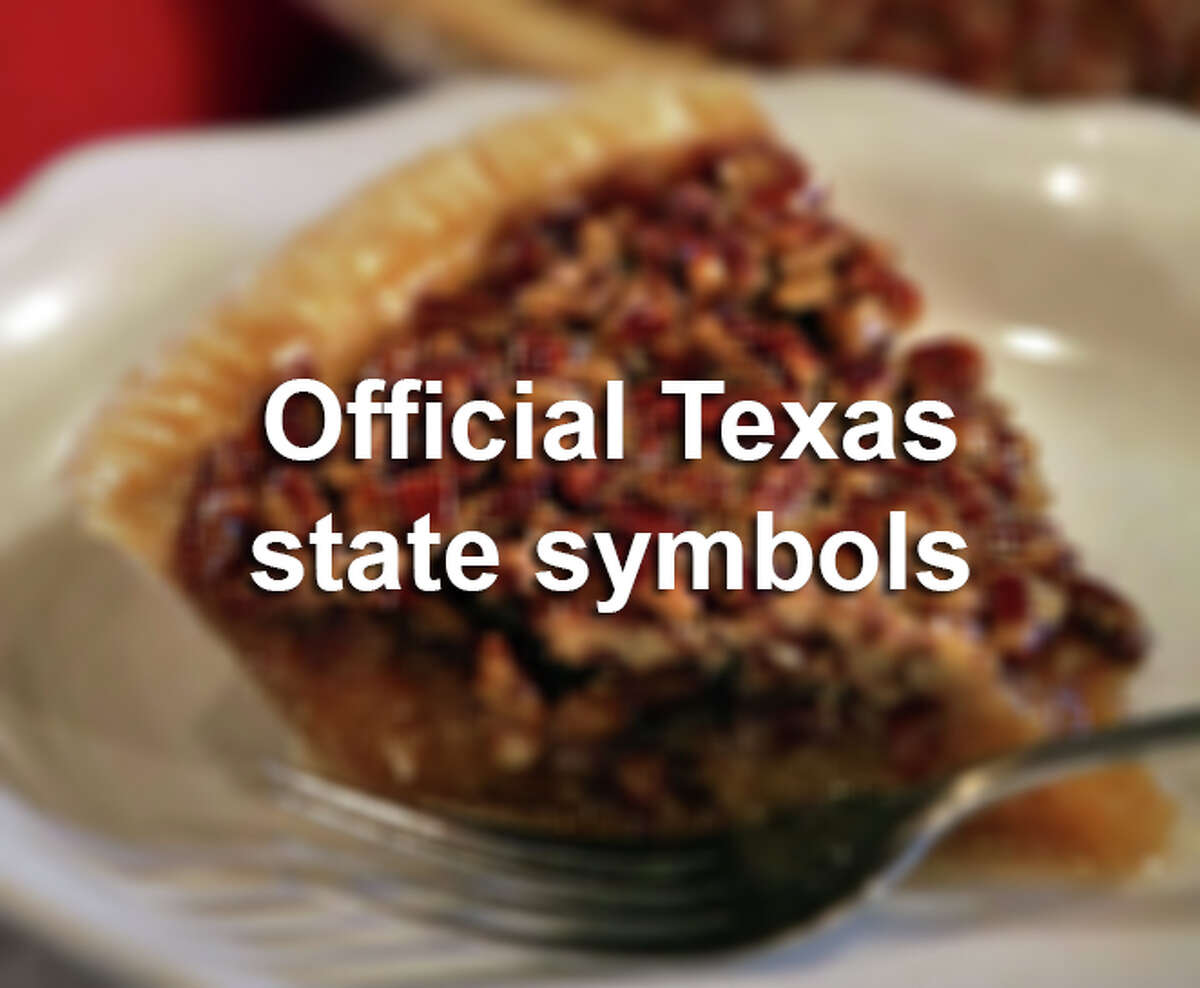 Texas has adopted a lot of crazy things as official state symbols over the years. Scroll through the gallery to see what lawmakers have deemed symbols of the Lone Star State.