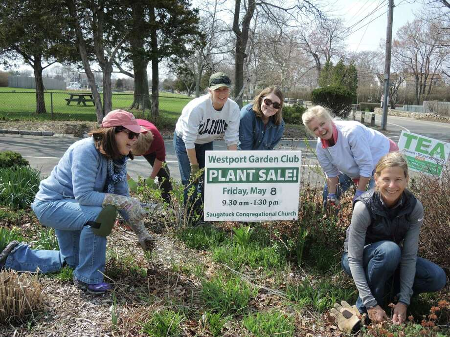 Members of the Westport Garden Club do recent spring cleaning at the Beach Buds garden at the entrance to Compo Beach. The group's annual plant sale takes place Friday, May 8, at the Saugatuck Congregational Church. Photo: Contributed Photo / Connecticut Post Contributed