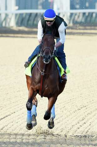Morning Line favorite for this year's Kentucky Derby American Pharaoh goes out for exercise with rider George Alvarez Wednesday morning at Churchill Downs April 29, 2015 in Louisville, Ky.  Saturday is the 141st running of The Kentucky Derby.       (Skip Dickstein/Times Union) Photo: SKIP DICKSTEIN