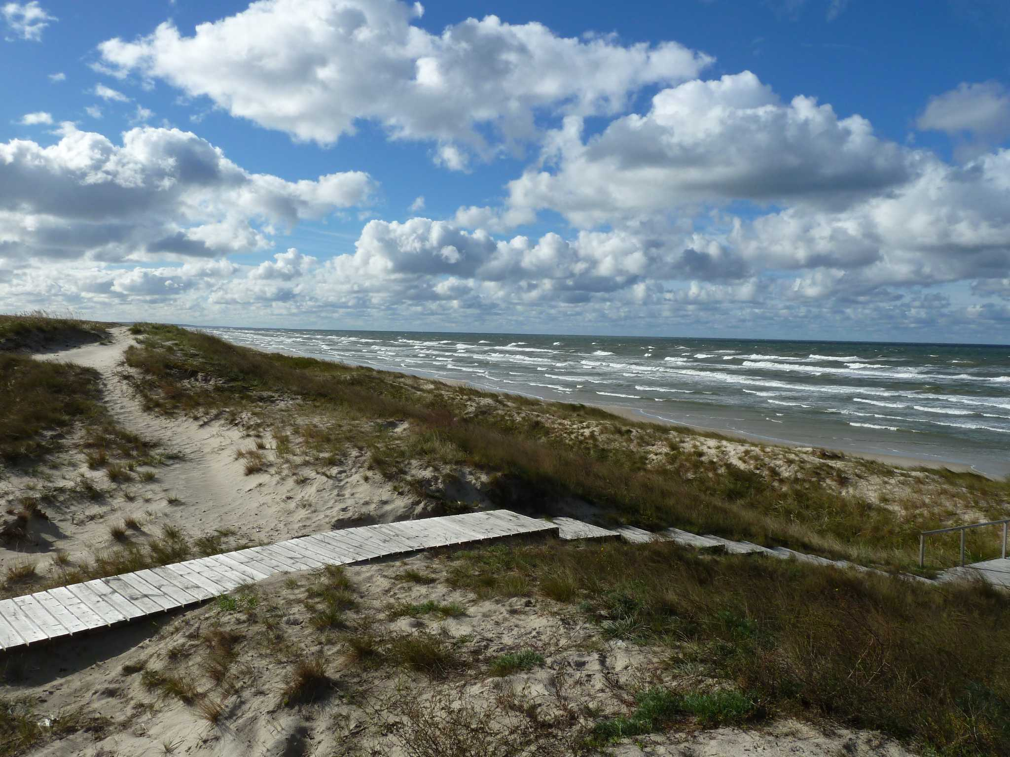 Prosecutors protect the Curonian Spit National Park 61