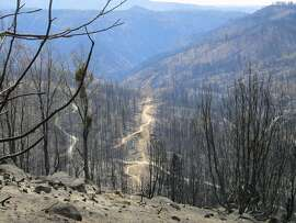 Rim Fire: Miles of matchsticks. Rim burned 402 square miles in the Sierra Nevada foothills near Groveland. The road to Cherry Lake, just reopened after being closed since August of 2013, provides this view. The dirts roads visible are from salvage logging operations.