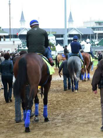 Morning line favorite American Pharaoh follows El Kabir and Dortmund to the track for their morning exercise Thursday morning April 30, 2015,  just two days before the 141st Kentucky Derby at Churchill Downs in Louisville, Kentucky.       (Skip Dickstein/Times Union) Photo: SKIP DICKSTEIN