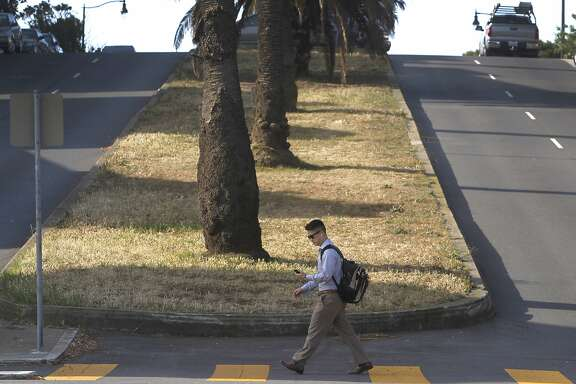 A man walks past the brown median strip at Dolores and 24th streets in San Francisco, Calif. on Wednesday, May 6, 2015. The city stopped watering the grassy strip to cutback on water consumption during the current drought crisis.