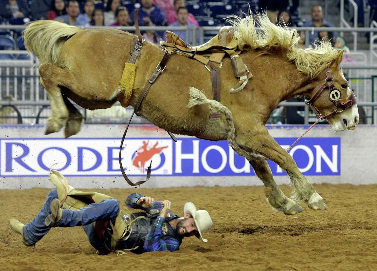Will Smith of Marshall, Mo., rolls out of the way after being bucked off in saddle bronc riding during RodeoHouston. The livestock show and rodeo use 14,000 yards of dirt each year.