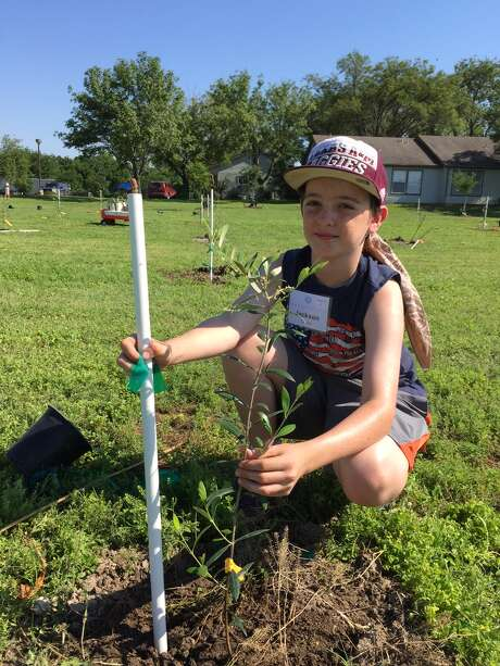 Cub Scout Jackson Crider volunteers to plant olive saplings at Mission Road Ministries. Photo: Courtesy Photo /Mission Road Ministries