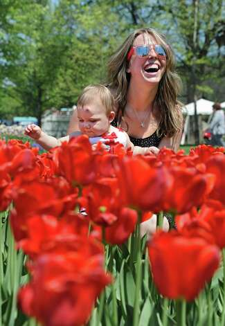 Dana Shoiniere of Colonie checks out the tulips with her daughter Hailey in Washington Park during the start of the 167th annual Tulip Festival on Friday, May 8, 2015 in Albany, N.Y. (Lori Van Buren / Times Union) Photo: Lori Van Buren / 00031725A