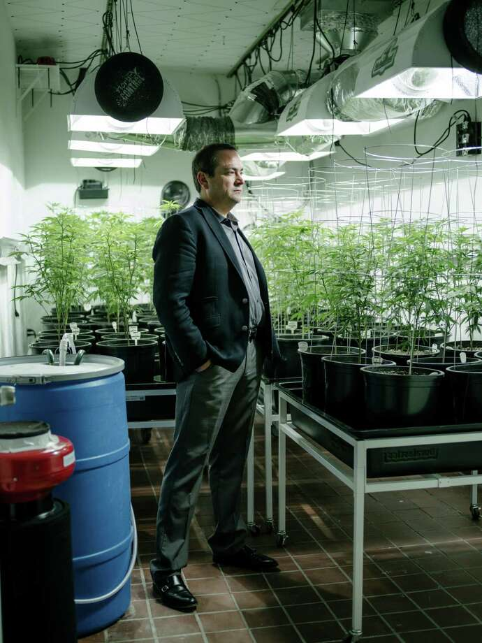 John Davis says his Seattle medical marijuana business earned $53,369 last year and ended up owing $46,340 in taxes. Photo: Ian C. Bates /New York Times / NYTNS
