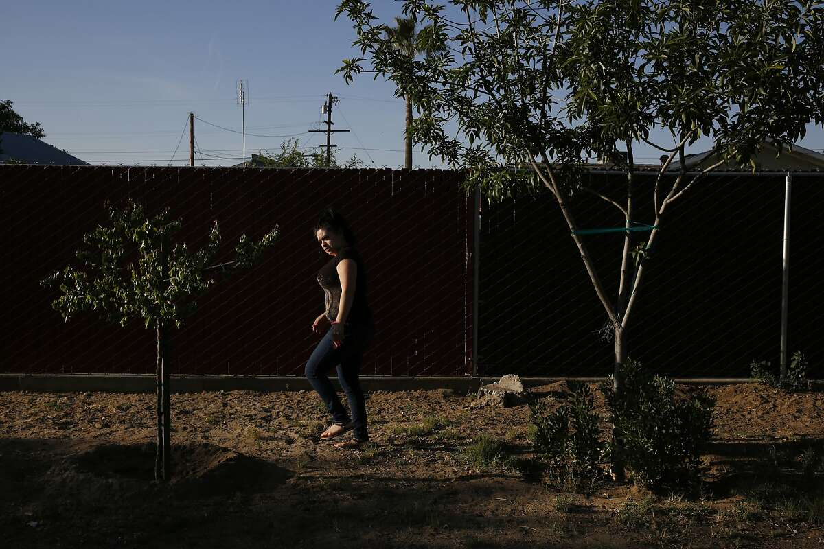 Lizette Serrato, 25, checks out the waning health of her mother Yolanda Serrato's remaining fruit trees in their backyard April 13, 2015 in Porterville, Calif. Yolanda Serrato's well ran dry while she was watering her lawn in the summer of 2014. Her family recently received a large tank that holds about two weeks worth of non-potable water. More than 500 wells have gone dry in East Porterville since the beginning of the drought four years ago. The Porterville Area Coordinating Council has provided homes that have run out of water with 300-gallon tanks and the city has been filling them while the county replaces the small tanks with larger 1,500-2,500 tanks as part of the county?•s household tank program. The larger tanks are filled every two weeks and the city has also been providing residents who sign up for the program with bottled water.