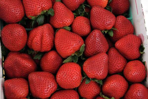A flat of ripe strawberries for sale at the Pasadena Strawberry Festival Sunday May 18, 2014.(Dave Rossman photo)