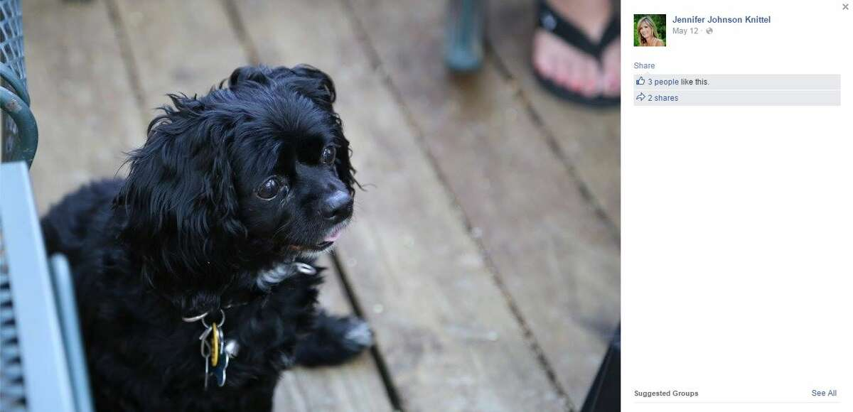 Photos from Facebook show Cookie, a dog allegedly beaten to death by a 10-year-old boy in Fort Worth on May 11, 2015. The boy is expected to be charged with delinquent conduct/animal cruelty-torture, a state jail felony punishable up to two years in prison.