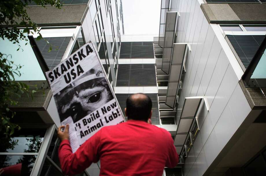 An animal rights activist yells up at the Skanska office on the fourth floor in protest of Skanska's involvement with University of Washington's new animal testing facility on Friday, May 15, 2015. Photo: DANIELLA BECCARIA, SEATTLEPI.COM / SEATTLEPI.COM
