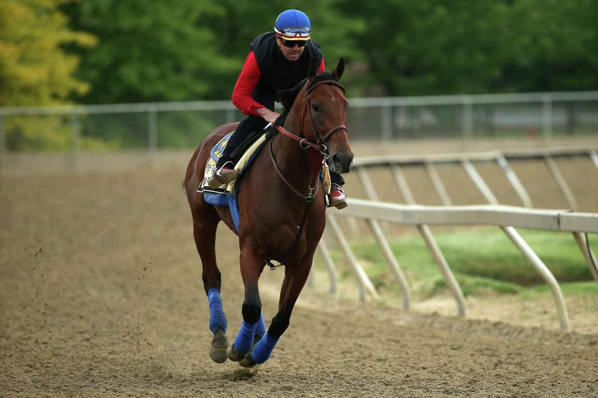 BALTIMORE, MD - MAY 15: American Pharoah trains on the track for the 140th Preakness Stakes at Pimlico Race Course on May 15, 2015 in Baltimore, Maryland. (Photo by Patrick Smith/Getty Images) ORG XMIT: 537409873