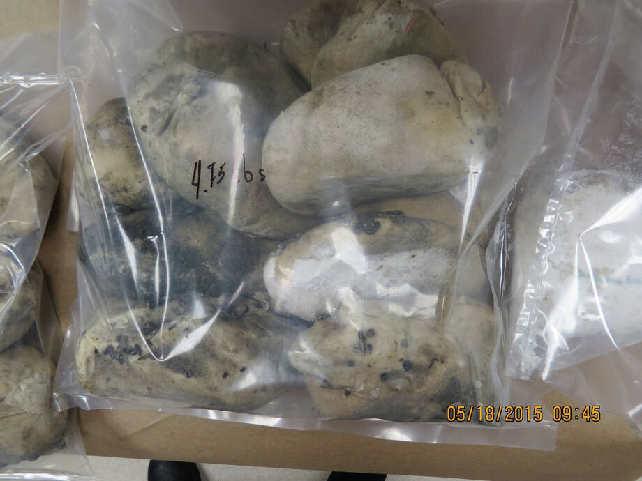 PHOTOS: Weird things found on Texas beachesPolice in Galveston recently found 30 bags of cocaine worth $175,000 washed ashore near Galveston Island State Park. Drugs aren't uncommon on Texas beaches: in 2010 another $2.1 million in cocaine was found by a jogger on Galveston's East beach, and in 2011 another $675,000 in cocaine was found (not to mention the giant brick of marijuana found in 2008).See what other weird items have washed ashore on Texas beaches ... Photo: Galveston Police