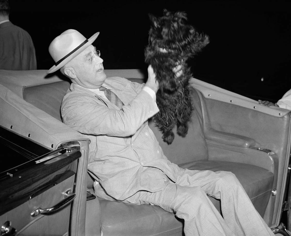 U.S. President Franklin D. Roosevelt lifts his dog Fala as he prepares to motor from his special train to the Yacht Potomac at New London, Conn., Aug. 3, 1941.