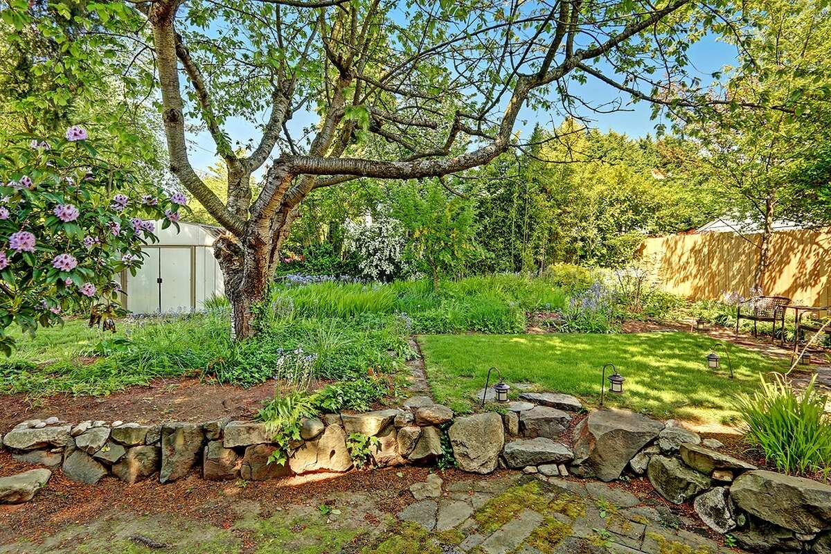 The backyard of 3522 S.W. Barton St.