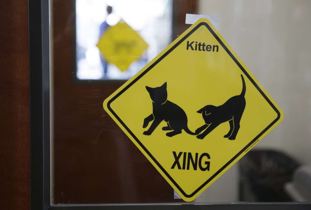 In this photo taken Thursday, Nov. 6, 2014, signs are posted at an entryway into the Cat Town Cafe in Oakland.
