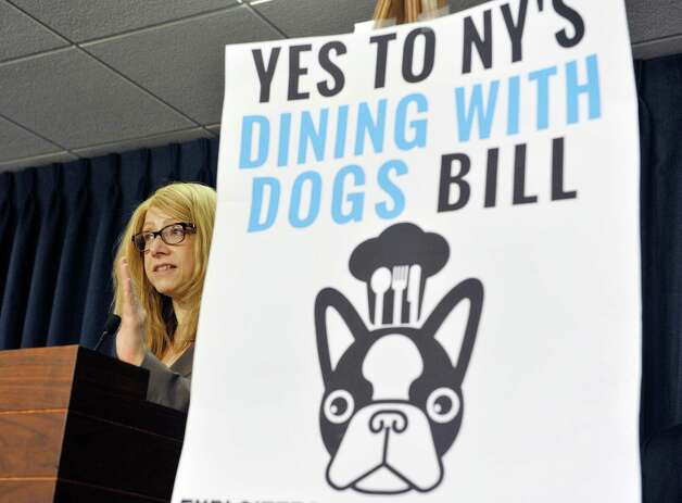 Assemblywoman Assemblywoman Linda Rosenthal addresses those gathered for a press conference by legislators and organizations that are in favor of the Dining with Dogs bill, on Tuesday, May 19, 2015, in Albany, N.Y.  (Paul Buckowski / Times Union) Photo: PAUL BUCKOWSKI / 00031915A