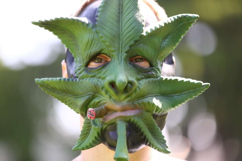 A man wears a mask during the annual Cannabis Freedom March from Capitol Hill's Volunteer park to Westlake in downtown Seattle. About 100 people marched to voice their displeasure with what appears to be the end of medical marijuana and a shift to a state-controlled system based on recreational marijuana. Photographed on Saturday, May 9, 2015. (Joshua Trujillo, seattlepi.com) Photo: SEATTLEPI.COM
