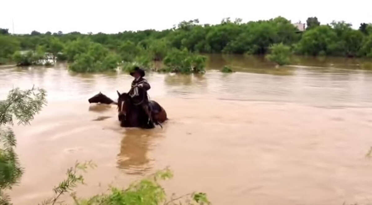 When floodwater threatened to wash away Will Barrett's prized herd of rodeo horses, he and his young boys sprung to action. They waded on horseback through the floods and even swam their ponies across the river to lasso and rescue all 31 lost livestock. Screenshot from YouTube, courtesy of Cross B Rodeo Company and Ranch