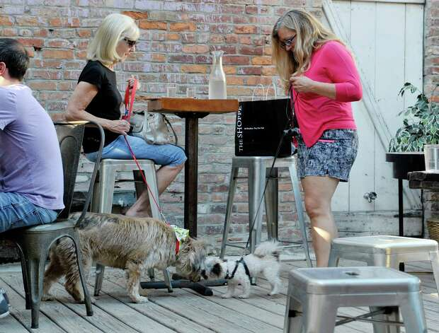 Cindy Bentley, left, from Niskayuna and her dog Mitzi, visit with Viviana Hansen from Troy and her dog Yogi at Yappy Hour at  Lucas Confectionery on Sunday, May 17, 2015, in Troy, N.Y.  The wine bar has a weekly happy hour for dogs and their owners.    (Paul Buckowski / Times Union) Photo: PAUL BUCKOWSKI / 00031867A