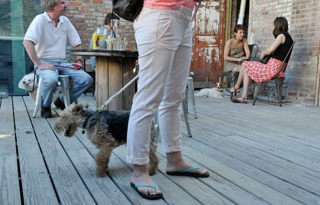 Dog owners and their dogs enjoy Yappy Hour at  Lucas Confectionery on Sunday, May 17, 2015, in Troy, N.Y.  The wine bar has a weekly happy hour for dogs and their owners.    (Paul Buckowski / Times Union) Photo: PAUL BUCKOWSKI / 00031867A