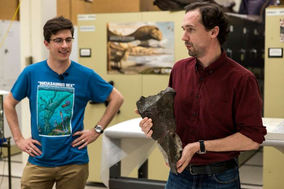 Dr. Christian Sidor, right, Burke Museum curator of vertebrate paleontology, and Brandon Peecook, left, a University of Washington graduate student, show off the first dinosaur fossil ever found in Washington state: an 80-million-year-old partial left femur bone of a theropod dinosaur, photographed Wednesday, May 20, 2015, at the Burke Museum in Seattle, Washington. The bone was collected by Burke Museum paleontologists on the shore of Sucia Island State Park in the San Juan Islands in May 2012. The rest of the two-legged, carnivorous dinosaur was likely washed away or carried away by scavengers. The fossil will be on display in the Burke Museum's lobby beginning Thursday, May 21. (Jordan Stead, seattlepi.com) Photo: JORDAN STEAD, SEATTLEPI.COM