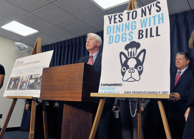Senator Kemp Hannon addresses those gathered for a press conference by legislators and organizations that are in favor of the Dining with Dogs bill, on Tuesday, May 19, 2015, in Albany, N.Y.  The bill passed the Senate already.  (Paul Buckowski / Times Union) Photo: PAUL BUCKOWSKI, Albany Times Union / 00031915A