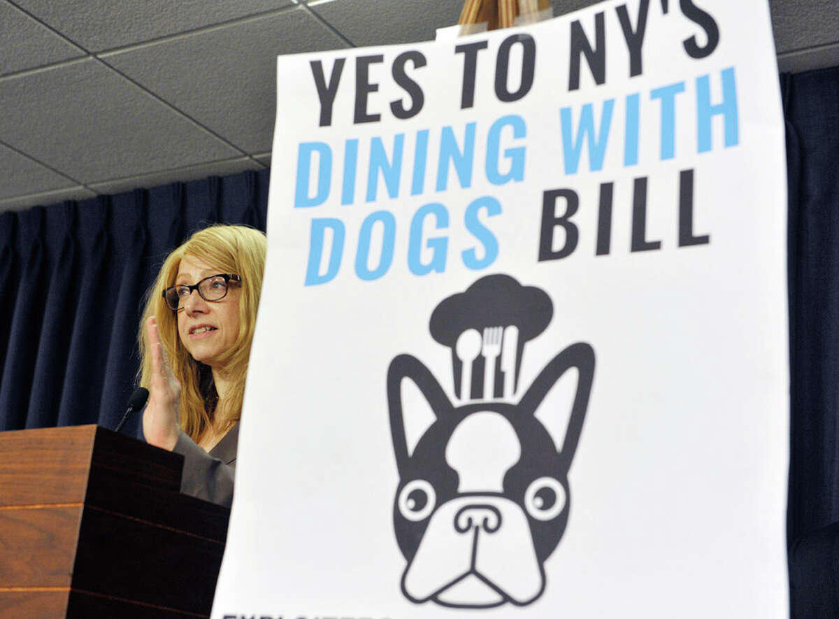 Assemblywoman Assemblywoman Linda Rosenthal addresses those gathered for a press conference by legislators and organizations that are in favor of the Dining with Dogs bill, on Tuesday, May 19, 2015, in Albany, N.Y. (Paul Buckowski / Times Union)