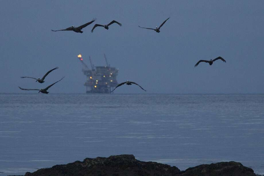 GOLETA, CALIFORNIA - MAY 20:  An oil platform sits in the distance as California brown pelicans fly over oil-contaminated water from an inland oil spill before dawn at Refugio State Beach on May 20, 2015 north of Goleta, California. About 21,000 gallons spilled from an abandoned pipeline on the land near Refugio State Beach, spreading over about four miles of beach within hours. The largest oil spill ever in U.S. waters at the time occurred in the same section of the coast where numerous offshore oil platforms can be seen, giving birth to the modern American environmental movement.  (Photo by David McNew/Getty Images) Photo: David McNew, Getty Images
