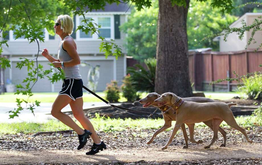 Dog-friendly digsThe 77007 ZIP code has 16 restaurants offering dog-friendly patios as well as running trails like the Heights esplanade, shown above.  Photo: Brett Coomer, HC Staff / © 2012 Houston Chronicle