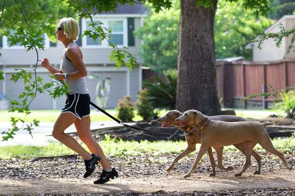 A woman runs with her dogs on the esplanade along Heights Boulevard.