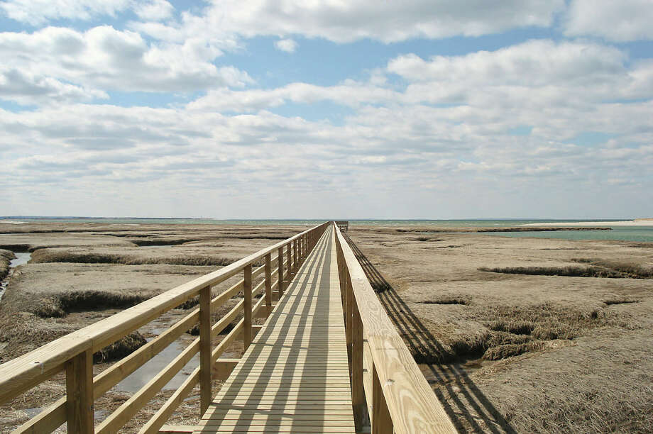 Bass Hole Boardwalk, Yarmouth Port Photo: William DeSousa-Mauk