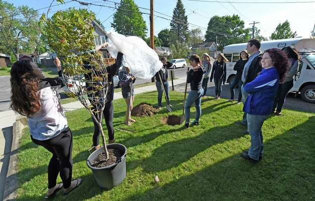 Members of the Schoharie High School Volleyball team plant a flowering dogwood tree on the grounds of Mekeel Christian Academy in memory of Mekeel Volleyball captain Carly Sinnott Friday morning, May 22, 2015, in Scotia, N.Y. (Skip Dickstein/Times Union) Photo: SKIP DICKSTEIN / 00031966A