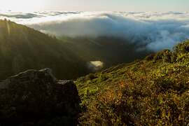 The East Peak of Mount Tamalpais provides a great spot to watch the fog roll in over the Bay Area in Mill Valley, Calif., Sunday, May 24, 2015.
