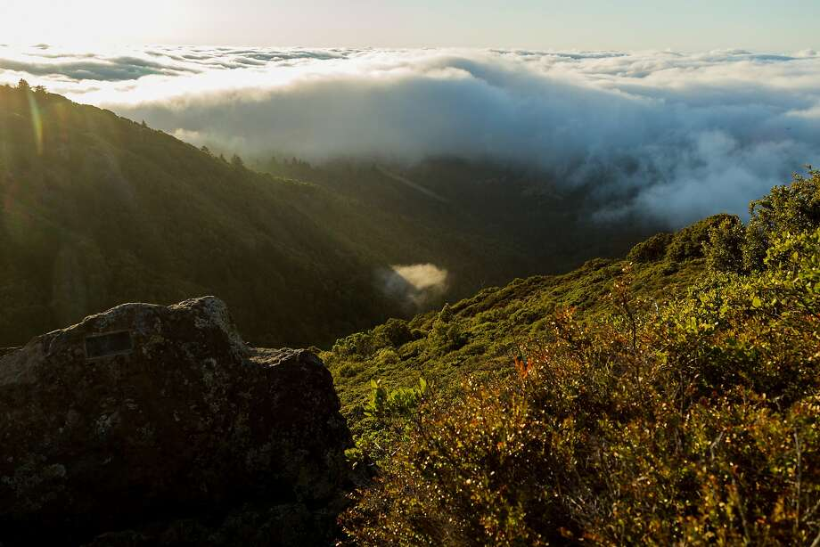 Mount Tamalpais in Marin. Photo: Jason Henry, Jason Henry For Medium