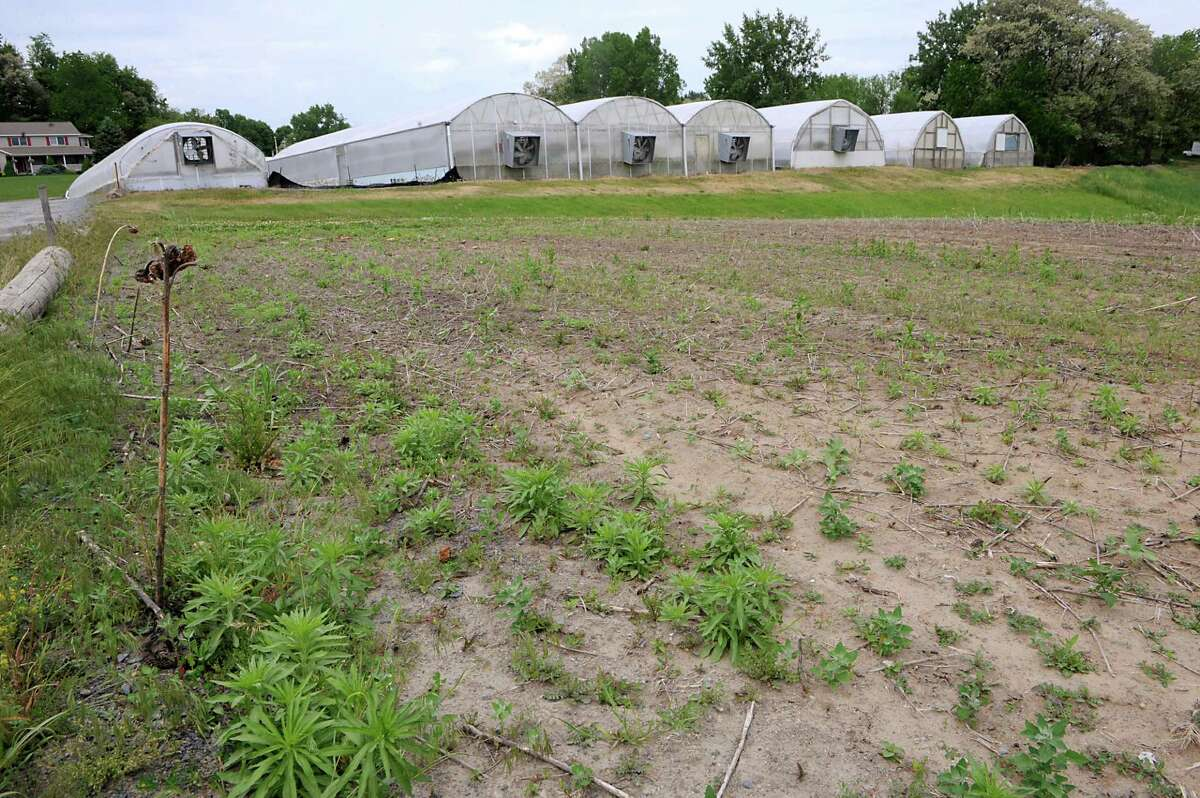 The recent drought is causing planting problems for farms like at Coleman's West Shaker Farm on Tuesday, May 26, 2015 in Colonie, N.Y. This is one of the fields they usually plant pumpkins and gourds but is hard as rock. (Lori Van Buren / Times Union)