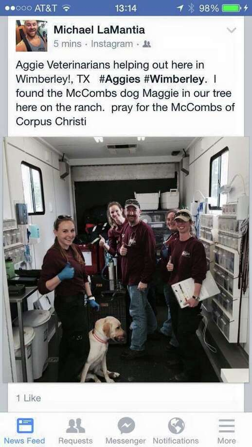 An Instagram photo shows Maggie, who was identified by microchip, with the Texas A&M Veterinary Emergency Team. Photo: Courtesy Photo