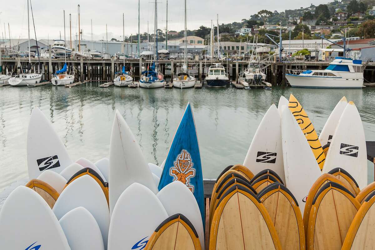 A variety of stand-up paddleboards in the harbor in Sausalito.