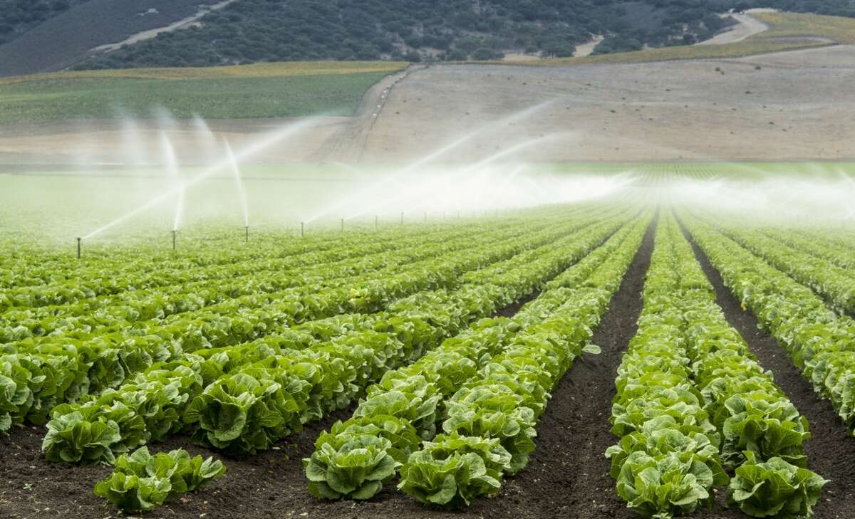 Some of the top myths about the California Drought:Farmers suck up the majority of the state's water. Of the water available, roughly 40 percent goes to farmers, 10 percent to urban uses and 50 percent environmental uses such as rivers, lakes, wetlands and refuges. There's no true villain in California water policy. All sectors need to better use and manage water.