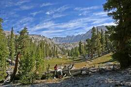 Chronicle outdoors writer Tom Stienstra checks map on Pacific Crest Trail at foot of Soldier Lakes Basin on flank of Mount Whitney on high Sierra crest