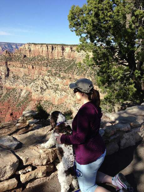 Carol Bryant and Dexter stop to take in the view at Mather Point on the Rim Trail in the Grand Canyon in Arizona. Hotels ranging from major chains to small outposts are capitalizing on the wave of travelers who bring their dogs. Photo: Darlene Bryant / Carol Bryant