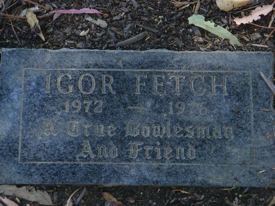 Grave of Igor Fetch, house dog and mascot at Bowles Hall on the Uc Berkeley campus Photo: John W. Lamon