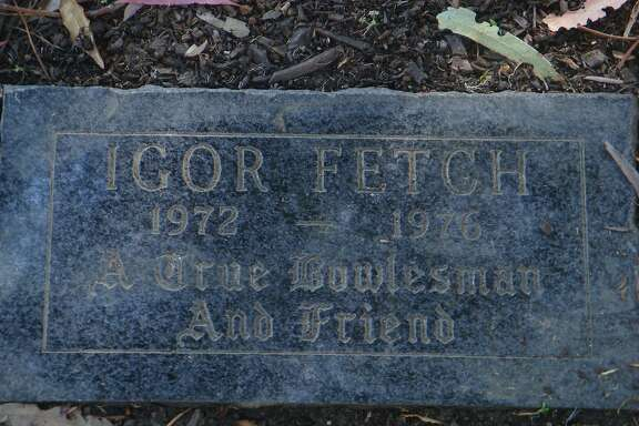 Grave of Igor Fetch, house dog and mascot at Bowles Hall on the Uc Berkeley campus