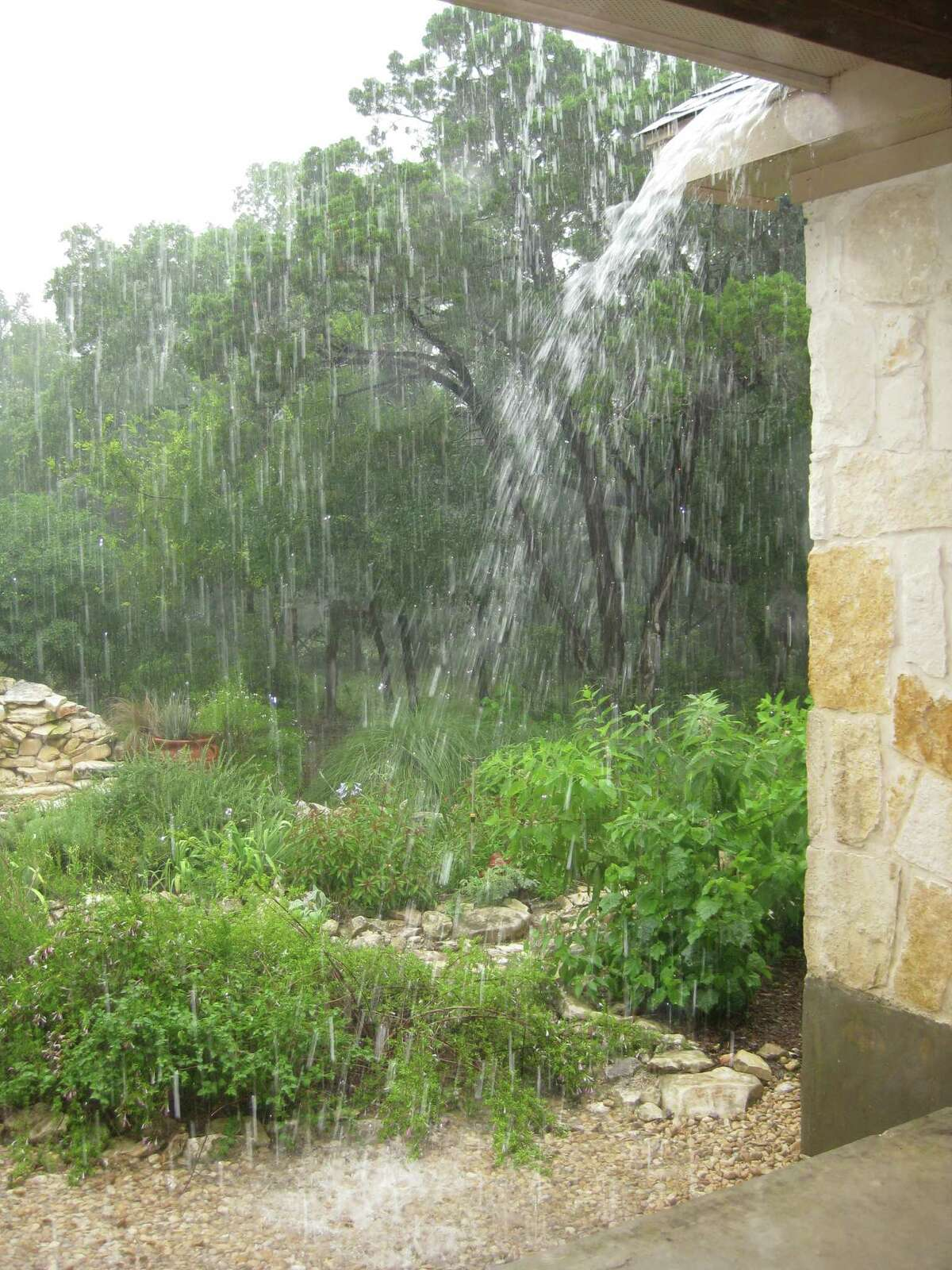 Steady rains in 2015, especially in May, have saturated the ground and created unfamiliar issues for gardeners accustomed to drought. Good drainage and careful choice of plants can keep gardens looking good in drought or downpours, both facts of life in the region.