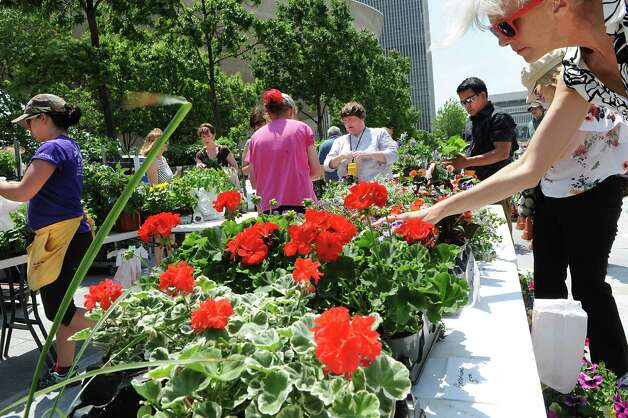 People shop for flowers at the weekly farmers market at  the Empire State Plaza on Wednesday, May 27, 2015 in Albany, N.Y.  (Lori Van Buren / Times Union) Photo: Lori Van Buren, Albany Times Union