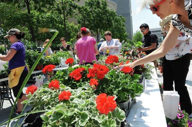 People shop for flowers at the weekly farmers market at  the Empire State Plaza on Wednesday, May 27