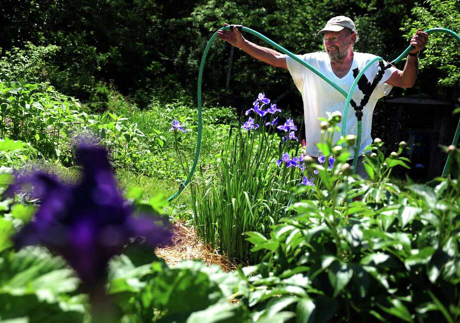 Bill Duesing, retired executive director of the CT Northeast Organic Farming Association, repositions an irrigation hose Friday, May 29, 2015, on his farm, Old Solar Farm, in Oxford, Conn. Duesing has had to start irrigating his fields earlier than expected this year due to a lack of rain. Photo: Autumn Driscoll / Connecticut Post